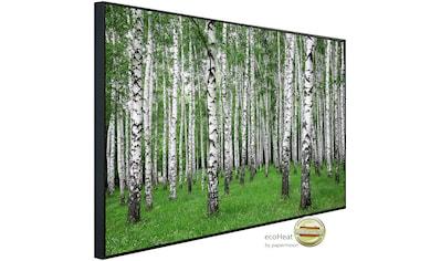 Papermoon Infrarotheizung »Sommer Birkenwald«, sehr angenehme Strahlungswärme kaufen