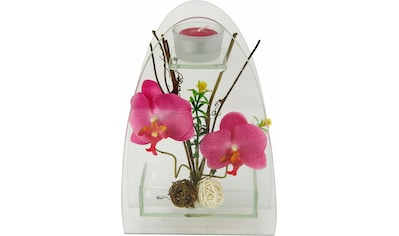 I.GE.A. Kunstpflanze »Orchidee mit Teelichthalter 23/15 cm« (1 Stück) kaufen