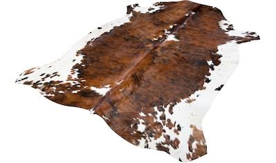 Trendline Fellteppich »Spots Natur«, fellförmig, 3 mm Höhe, echtes Rinderfell,... kaufen