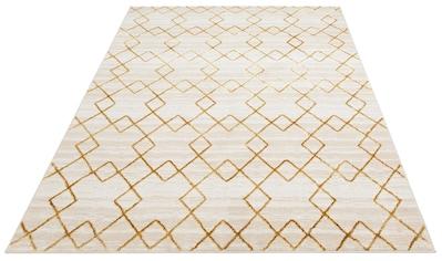DELAVITA Teppich »Mizuna«, rechteckig, 11 mm Höhe, Glanz-Optik, Wohnzimmer kaufen