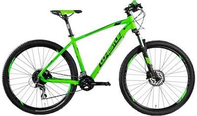 Whistle Mountainbike »Miwok 2053«, 16 Gang Shimano Acera Schaltwerk, Kettenschaltung kaufen