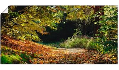 Artland Wandbild »Herbstteppich«, Wald, (1 St.), in vielen Größen & Produktarten... kaufen