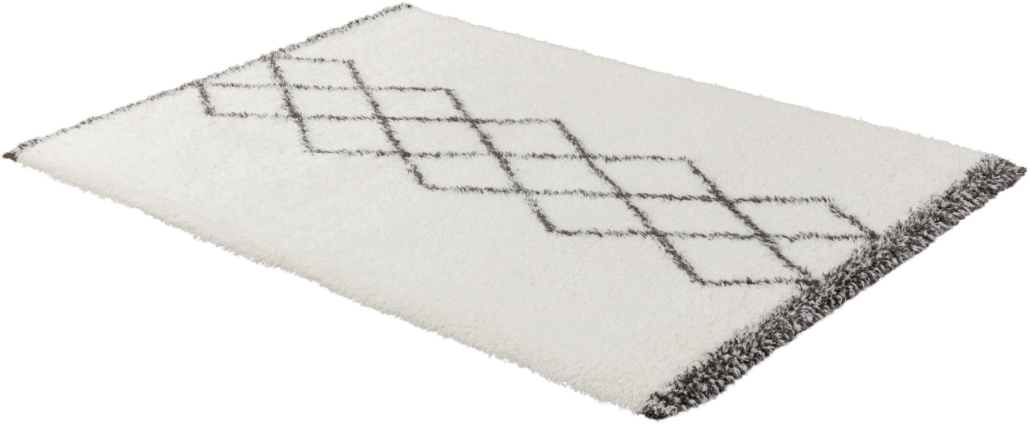 Hochflor-Teppich Aversa 194 ASTRA rechteckig Höhe 45 mm maschinell gewebt