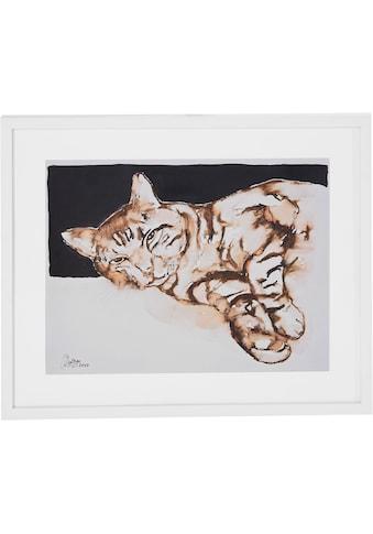 Guido Maria Kretschmer Home&Living Bild »Katze«, von Frank Mutters kaufen