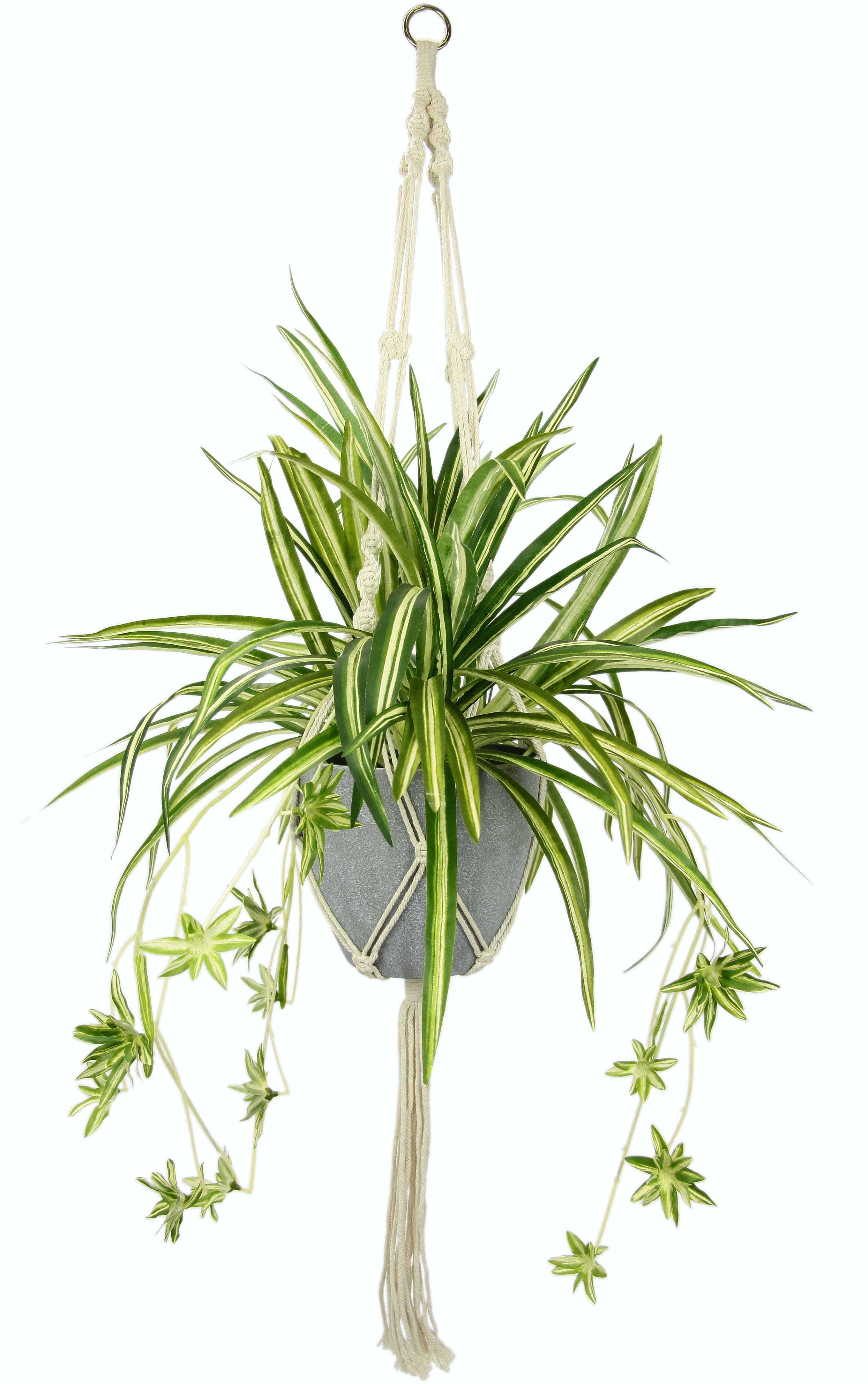 I.GE.A. Künstliche Zimmerpflanze Wasserlilie (1 Stück) weiß Zimmerpflanzen Kunstpflanzen Wohnaccessoires