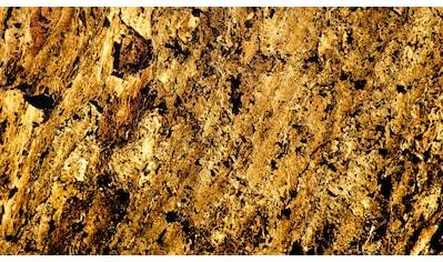 Slate Lite Dekorpaneele »Translucent Burning Forest«, aus Echtstein kaufen