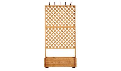 PROMADINO Holzspalier Pergola mit Pflanzkasten, BxTxH: 140x65x200 cm kaufen