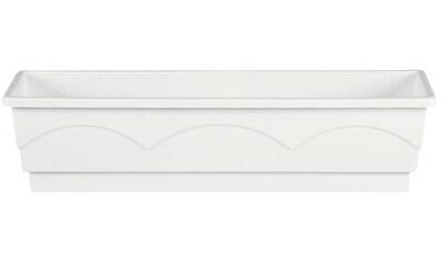 Emsa Blumenkasten »LAGO«, BxTxH: 75x22x18 cm, weiß kaufen