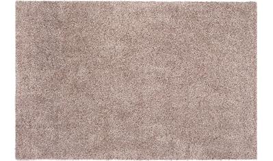 Fußmatte, »Samson«, Andiamo, rechteckig, Höhe 5 mm, maschinell getuftet kaufen