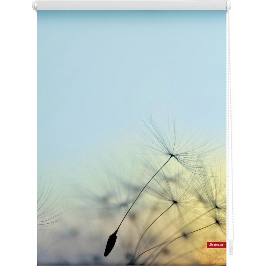 LICHTBLICK ORIGINAL Seitenzugrollo »Klemmfix Motiv Pusteblume«, Lichtschutz, ohne Bohren, freihängend, bedruckt