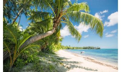 Komar Fototapete »Fiji Dreams Boat«, mehrfarbig-natürlich-bedruckt kaufen