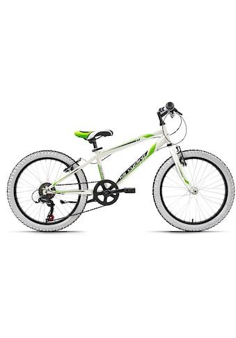 KS Cycling Kinderfahrrad »Scrawler«, 6 Gang Shimano Tourney Schaltwerk, Kettenschaltung kaufen
