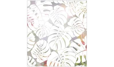 MySpotti Fensterfolie »Look Monstera white«, halbtransparent, glattstatisch haftend,... kaufen