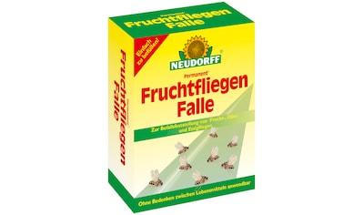 Neudorff Insektenvernichter »Permanent Fruchtfliegen Falle«, zum Monitoring kaufen