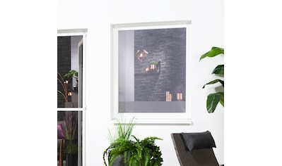 hecht international Insektenschutz-Fenster »Fliegengitter« kaufen