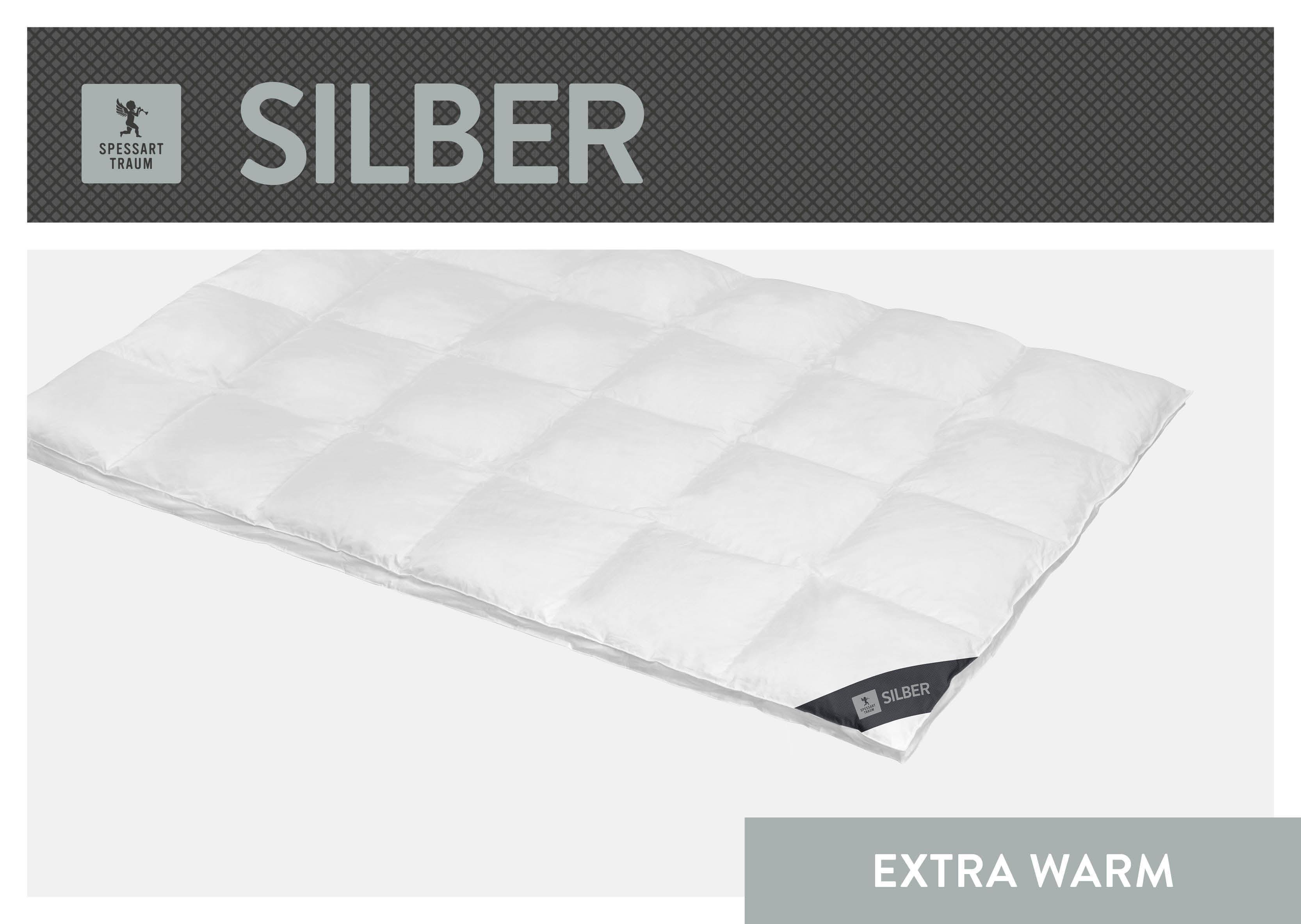 Daunenbettdecke Silber SPESSARTTRAUM extrawarm Füllung: 100% Daunen Bezug: 100% Baumwolle
