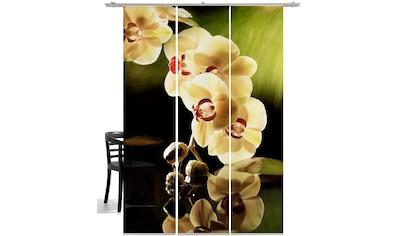 Schiebegardine, »Orchidee«, Emotion Textiles, Klettband 3 Stück Kaufen