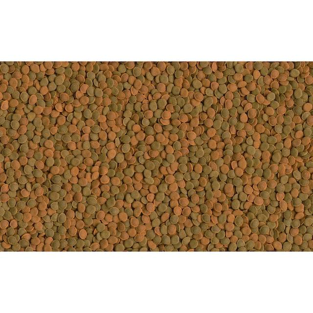 TETRA Fisch-Flockenfutter »Wafer Mix«, 2x250 ml