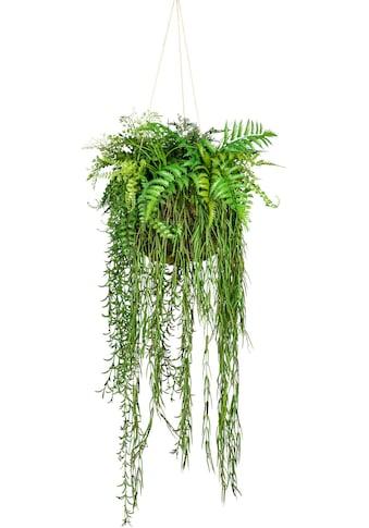 Creativ green Künstliche Zimmerpflanze »Dekokugel zum Hängen« kaufen