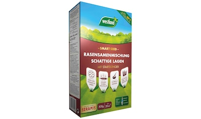 Westland Rasensamen »Smart Seed für schattige Lagen«, mit Startdünger, für ca. 20 m² kaufen
