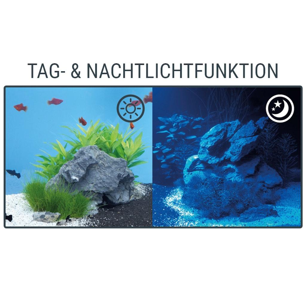 Tetra LED Aquariumleuchte »Tetronic LED ProLine 580«