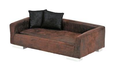SILVIO design Tiersofa »Modern« kaufen
