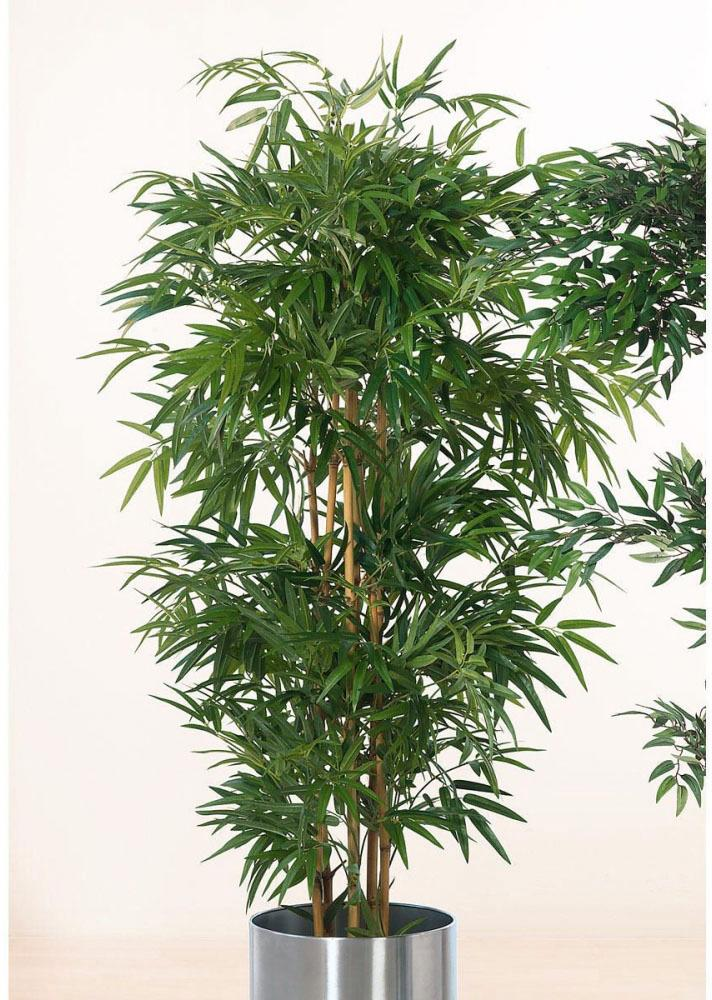 Kunstpflanze Bambusbaum   Dekoration > Dekopflanzen   Grün