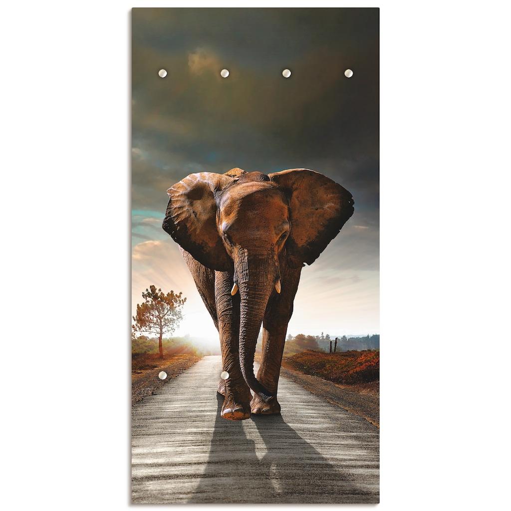 Artland Garderobe »Ein Elefant läuft auf der Straße«, platzsparende Wandgarderobe aus Holz mit 6 Haken, geeignet für kleinen, schmalen Flur, Flurgarderobe