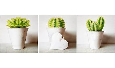 Art for the home Wanddekoobjekt »Kaktus« kaufen