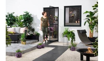 hecht international Insektenschutz-Tür, BxH: 120x240 cm kaufen