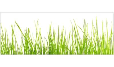 MYSPOTTI Badrückwand »mySPOTTI aqua Gras«, Höhe: 45 cm kaufen
