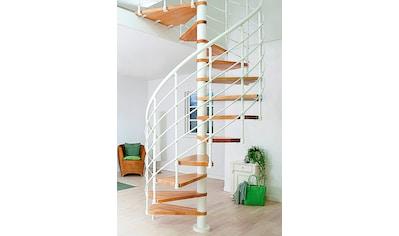 Dolle Spindeltreppe »Oslo«, Ø: 160 cm kaufen