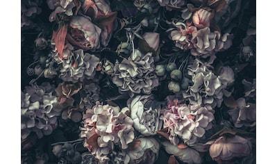 Consalnet Vliestapete »Blumen Vintage Muster«, floral kaufen