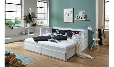 Relita Funktionsbett »Kick«, mit 2 Schubladen, Liegefläche ausziehbar kaufen