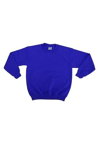 Gildan Rundhalspullover »Kinder Unisex Sweatshirt mit Rundhalsausschnitt« kaufen