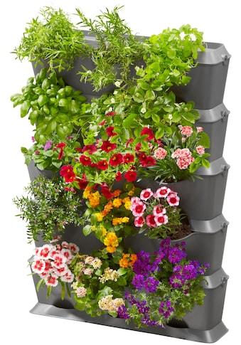 GARDENA Pflanzkübel »NatureUp!, 13151-20«, Set-Vertikal mit Bewässerung kaufen
