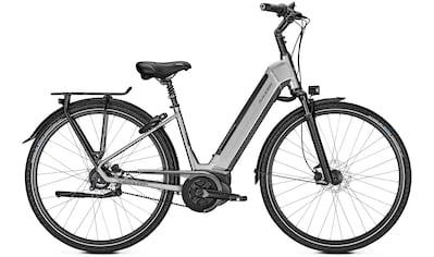 Raleigh E - Bike »Boston Premium«, 8 Gang Shimano Nexus Schaltwerk, Nabenschaltung, Mittelmotor 250 W kaufen