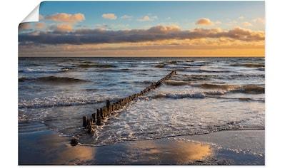 Artland Wandbild »Ostseeküste auf der Insel Moen Dänemark«, Küstenbilder, (1 St.), in... kaufen