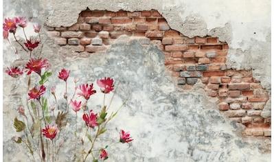 PAPERMOON Fototapete »Brickwall«, Vlies, in verschiedenen Größen kaufen