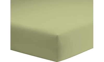 Schlafgut Spannbettlaken »Microfaser-Feininterlock«, aus reiner Microfaser kaufen