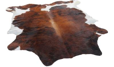 THEKO Fellteppich »Muh 6825«, fellförmig, 3 mm Höhe, echtes Rinderfell, Naturprodukt -... kaufen