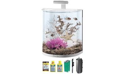 Tetra Aquarium »AquaArt Explorer Line 60l LED«, BxTxH: 51x33,5x51,5 cm, 60 l kaufen