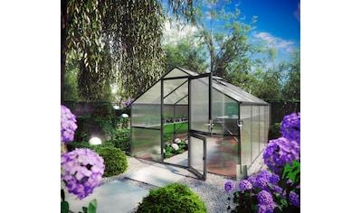 KGT Gewächshaus »Orchidee IV«, BxTxH: 297x429x233 cm, anthrazit, inkl. Regenrinne kaufen