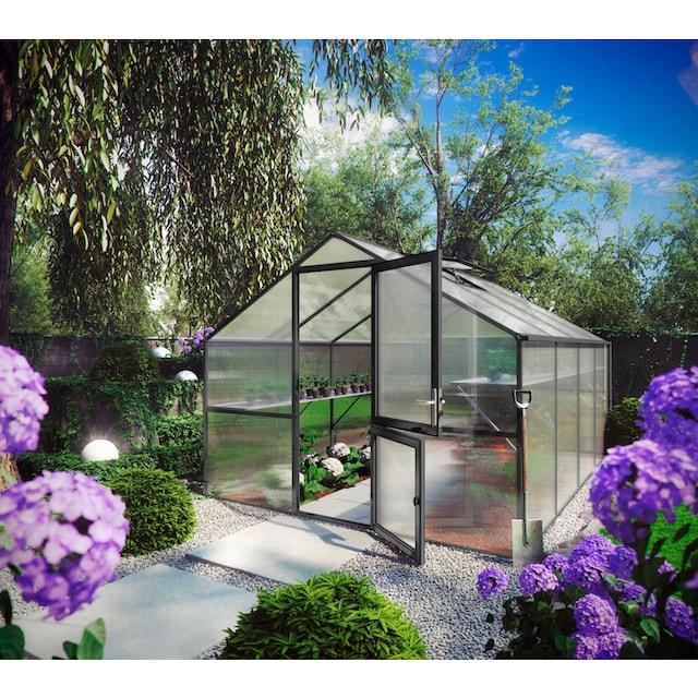 KGT Gewächshaus »Orchidee IV«, BxTxH: 297x429x233 cm, anthrazit, inkl. Regenrinne