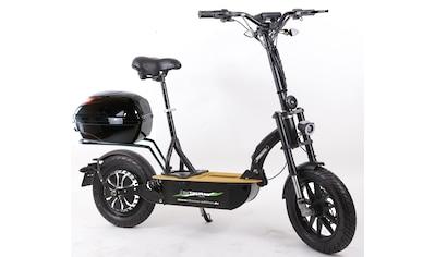 "Didi THURAU Edition E - Scooter »""Eco - Tourer"" 20 km/h Safety«, 600 Watt, 20 km/h kaufen"