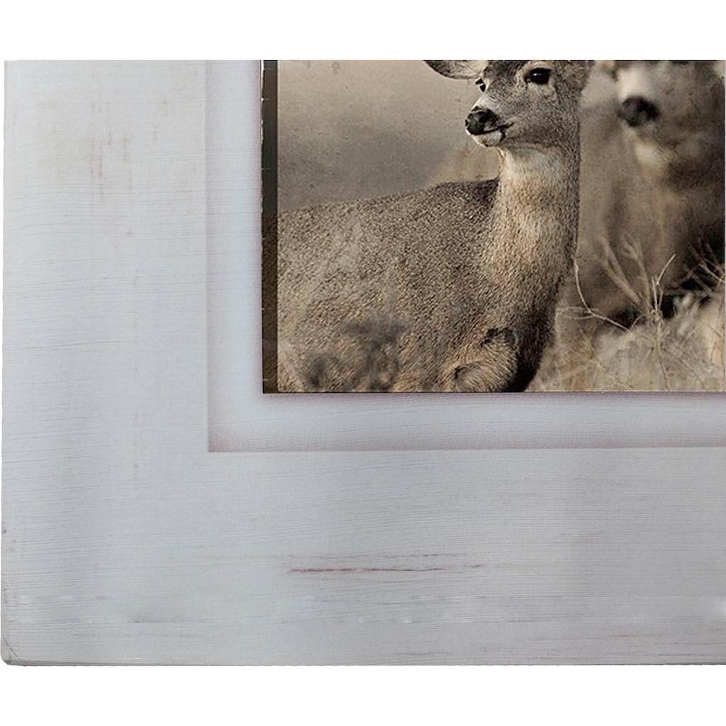 Home affaire Holzbild »Reh/Hirsch«, 40/40 cm