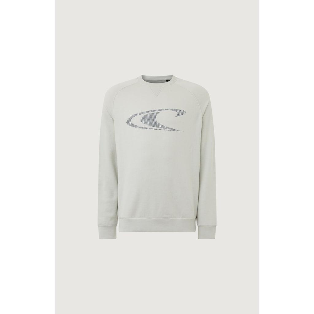 """O'Neill Sweatshirt »""""Color Grindle""""«, mit Rundhalsausschnitt"""
