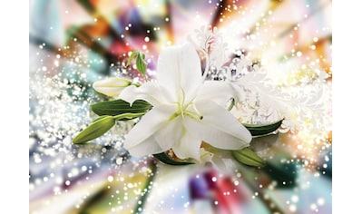 Consalnet Fototapete »Magic Lilie«, verschiedene Motivgrößen, für das Büro oder Wohnzimmer kaufen