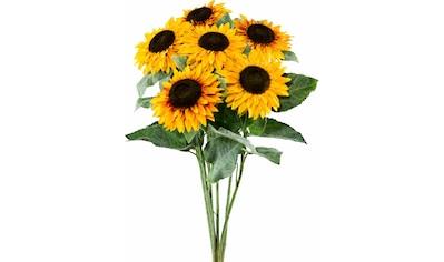 Creativ green Kunstblume »Sonnenblume« (Set, 6 Stück) kaufen