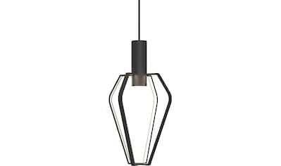design for the people,LED Pendelleuchte»Spider«, kaufen